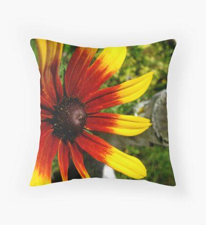 Rubeckia Sunshine Throw Pillow