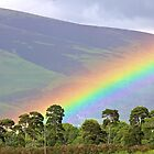 Rainbow behind the trees by mypic
