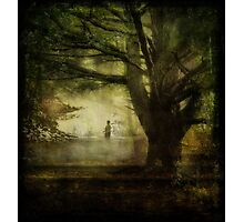 Wandering Through the Woods Photographic Print