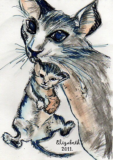 Kittens can happen to anyone by Elizabeth Kendall