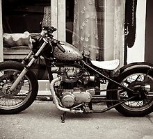 Hardtail by Paul Davey