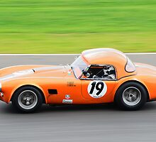 Chiles/Ingram AC Cobra by Willie Jackson
