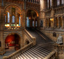Hogwarts Moving Staircase? by Leadinlines