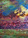 abundance with light colour & joy by richman