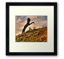 Beyond The Black Stump - Near Oberon, NSW - The HDR Experience Framed Print