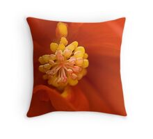 Begonia at the Heart  Throw Pillow