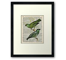 Green Canary Brds Over Vintage Book Page Framed Print