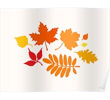 Classic Leaves Pattern Poster