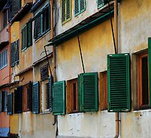The windows of Ponte Vecchio by Javimage