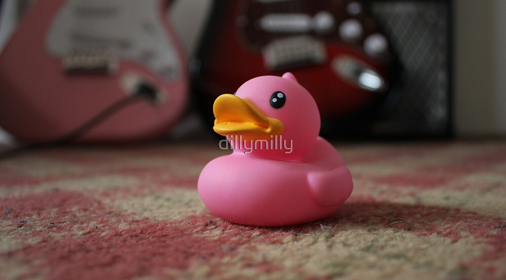 The Pink Duck by dillymilly