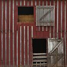 Barn Doors by Sheryl Gerhard