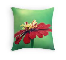 All That I Dreamed.... Throw Pillow