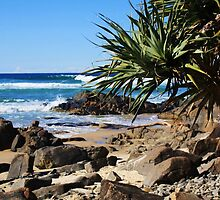 cabarita... by gail woodbury
