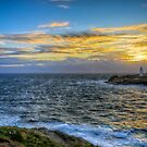 Godrevy Lighthouse by timmburgess