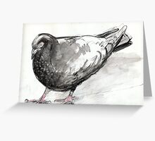 Pigeon at Flinders Street Greeting Card