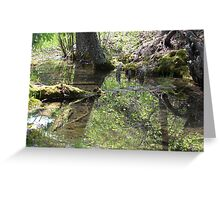 Reflections In A Forest Pond Greeting Card