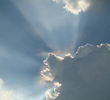 Rays of Light ~ by virginian