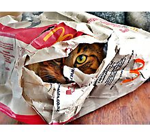 Lurking in wait of the unwary fast food junkie!  Photographic Print