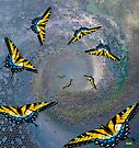 Unplanned Migration by Diane Johnson-Mosley