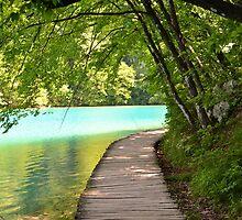 Beautiful Lakes - Plitvice by Billboeing