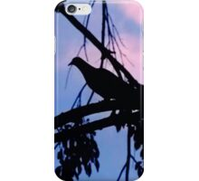 Mourning Dove in Silhouette iPhone Case/Skin