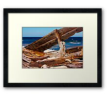 from water we come Framed Print