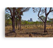 Arhnem Land, Northern Territory, Australia. Canvas Print