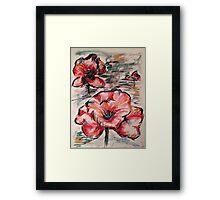 Pastel Poppy Framed Print