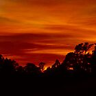 Sunrise by Floydwilson