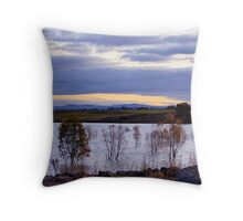 Winter Evening Throw Pillow
