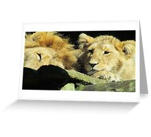 Wake up Dad Greeting Card
