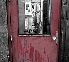 The door to the town by Robert Coppock