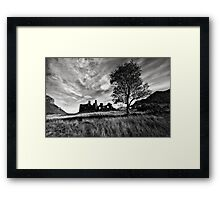 Ruin and tree Framed Print