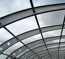 Sky Web by Jen  Hutchison