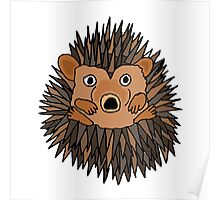 Funky Artistic Baby Porcupine Poster