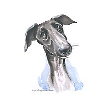 Pondering Greyhound Puppy Photographic Print