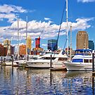 Liberty Landing Marina Against Jersey City Skyline by Susan Savad