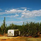 secret place in cactus garden by Inese