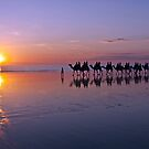 Sunset on Cable Beach by Liz Percival