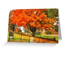 Fall on Cemetery Road Greeting Card