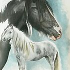 Gypsy Cob by BarbBarcikKeith