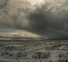 Snow storm, North Denes, Great Yarmouth by Alex Drozd