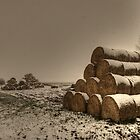 Haystacks, Norfolk, England by Alex Drozd
