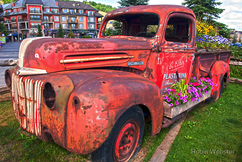 If You Can't Drive it Anymore-Turn it into a Planter by Robin Webster