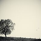 One tree by AD-DESIGN