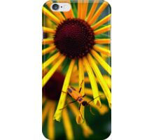 Beetle on a Flower  iPhone Case/Skin