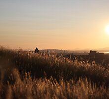 Golden Brown - Edinburgh Sunset by Mark Brown