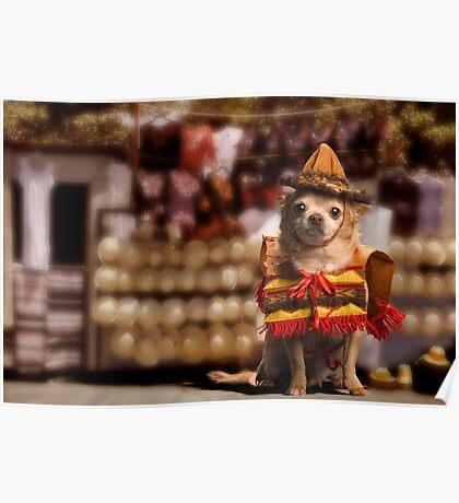 Chihuahua Bandito Poster
