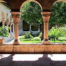 Cloisters  by Alberto  DeJesus