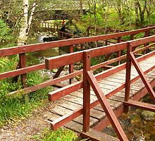 Beinn Eighe ~ Burn, Bridge, Birch, Beauty by artwhiz47
